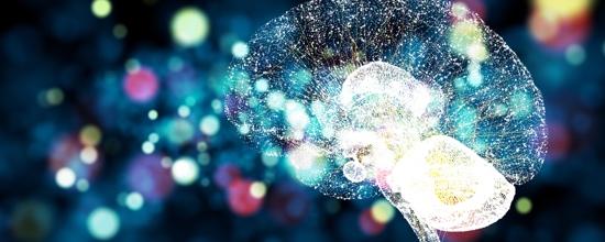PQQ en de hersenen